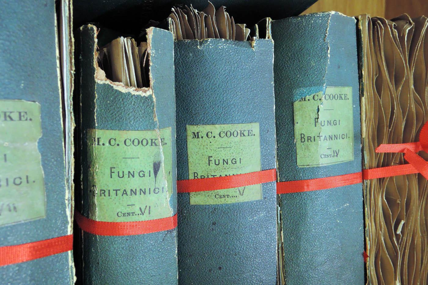Kew books
