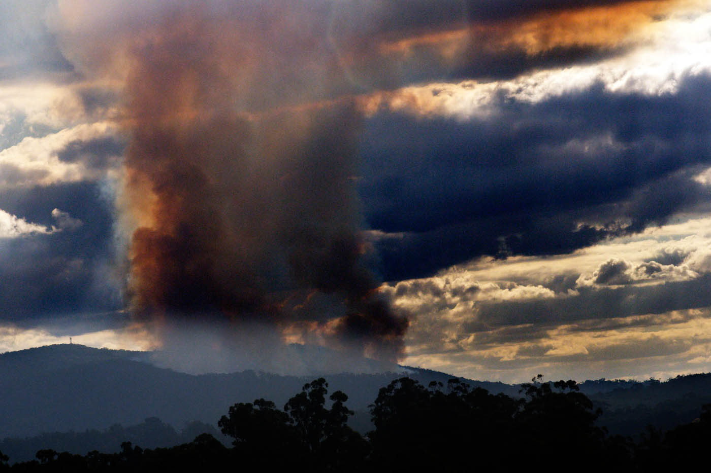 Fire in the Dandenong Ranges
