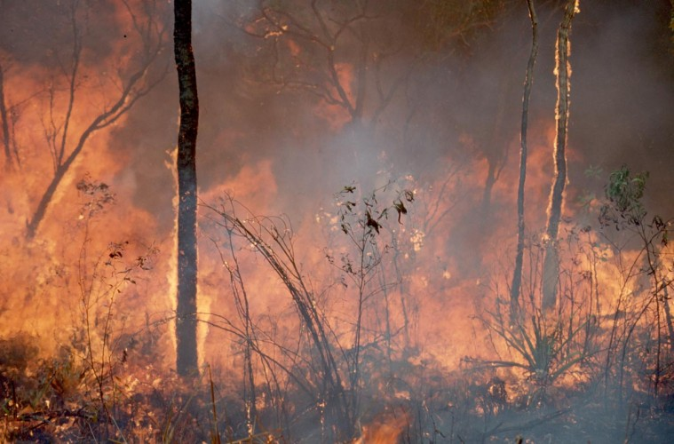 Fire in the tropics. Image: CSIRO.
