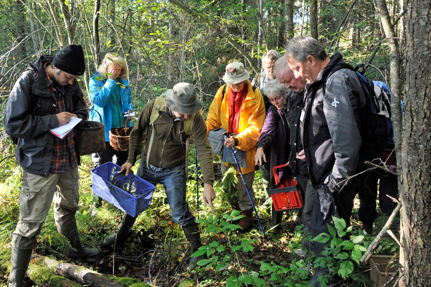 Mykologiveckan Swedish Mycological Society September 2013