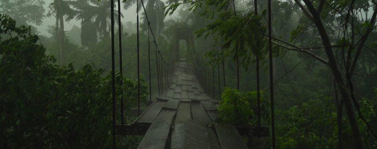 German Hanging Bridge